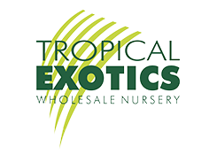 Tropical Exotics